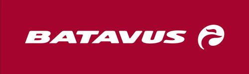 BATAVUS_logo_diap_RGB_300dpi.jpg