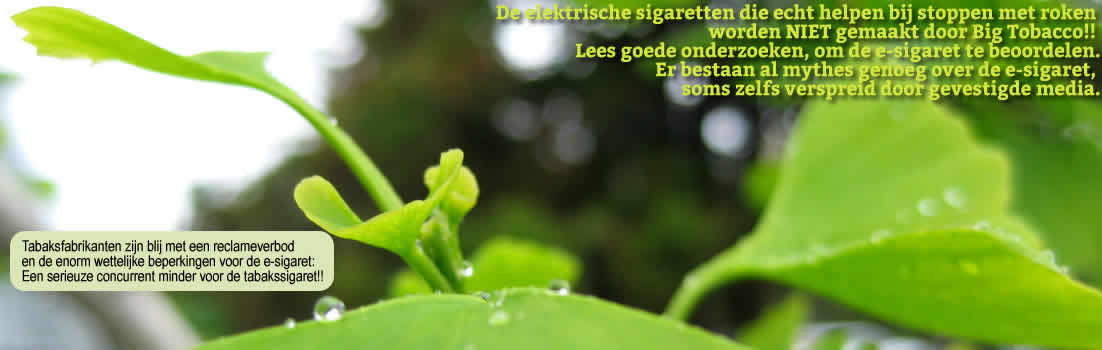 Afbeelding met tekst over de E-sigaret